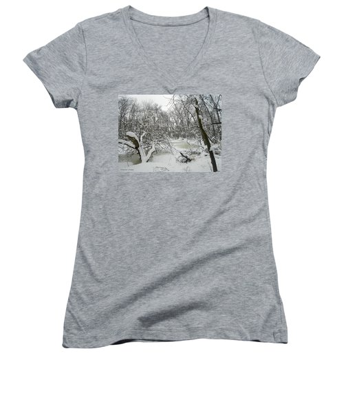 Winter Forest Series 3 Women's V-Neck (Athletic Fit)