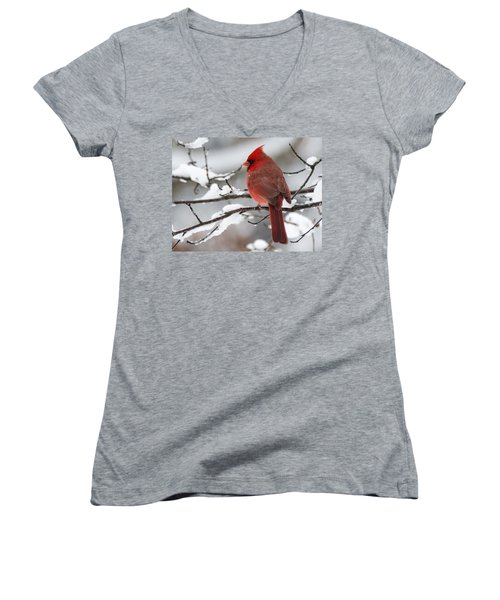 Winter In Red Women's V-Neck