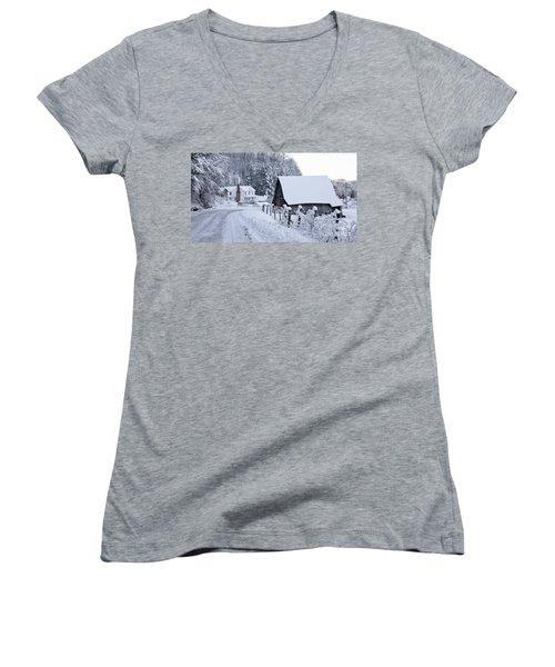 Winter In Virginia Women's V-Neck T-Shirt