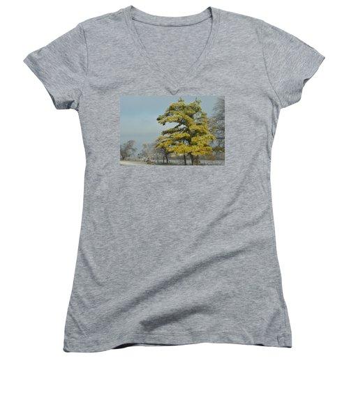 Women's V-Neck T-Shirt (Junior Cut) featuring the photograph Winter Landscape by Debra Martz