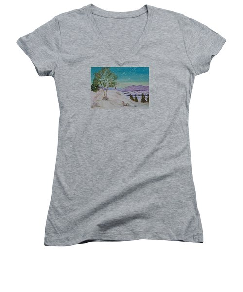 Winter Mountains With Hare Women's V-Neck