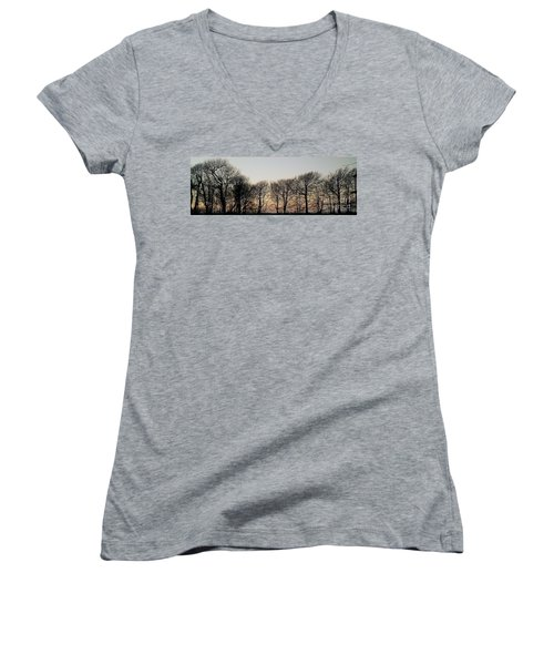 Winter Skyline Women's V-Neck T-Shirt