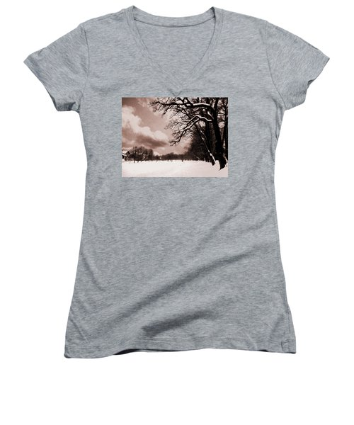 Women's V-Neck T-Shirt (Junior Cut) featuring the photograph Winter Tale by Nina Ficur Feenan