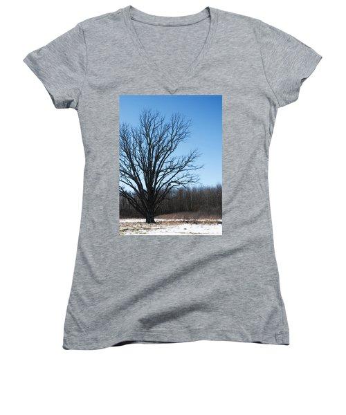 Winter Tree Women's V-Neck T-Shirt