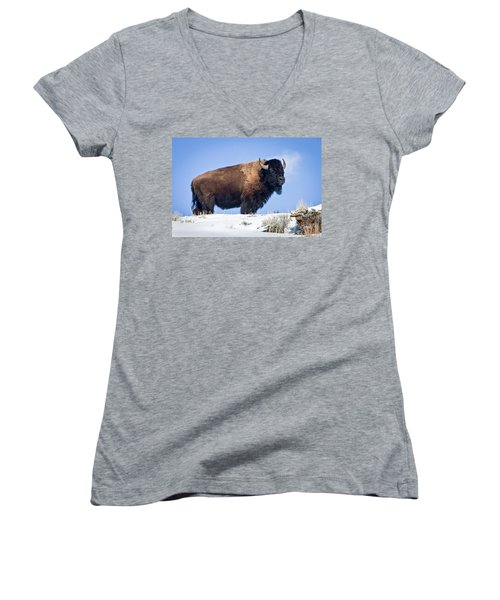 Women's V-Neck T-Shirt (Junior Cut) featuring the photograph Winter Warrior by Jack Bell