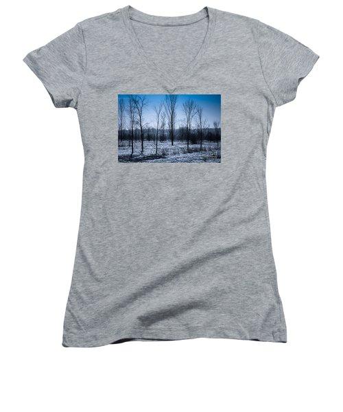 Women's V-Neck T-Shirt (Junior Cut) featuring the photograph Winter Wonderland by Bianca Nadeau