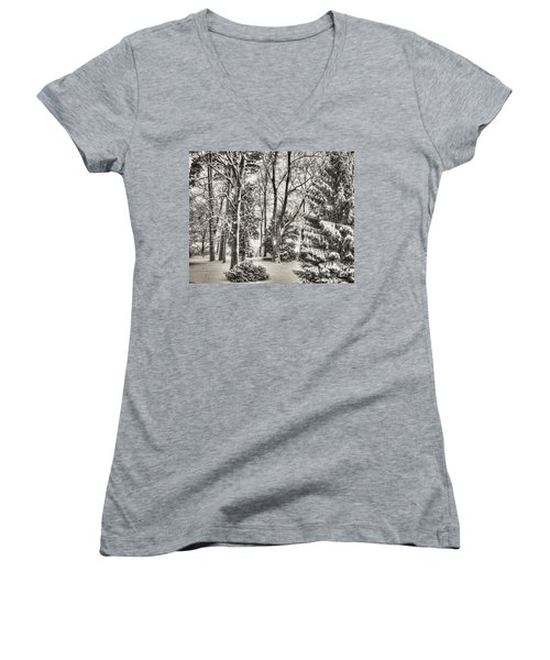 Winter Zauber 03 Women's V-Neck
