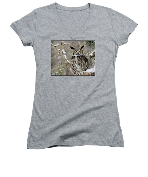 Wise Old Great Horned Owl Women's V-Neck T-Shirt
