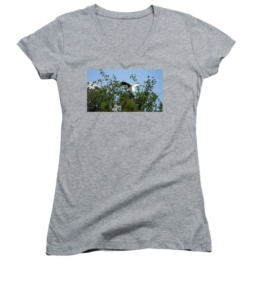 Women's V-Neck T-Shirt (Junior Cut) featuring the photograph Wood Stork by Ron Davidson