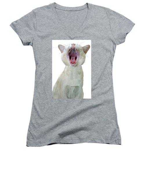 Yawning Cat Women's V-Neck
