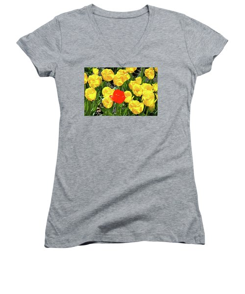 Yellow And One Red Tulip Women's V-Neck T-Shirt (Junior Cut) by Ed  Riche