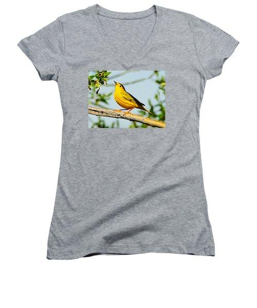 Yellow Bird Women's V-Neck (Athletic Fit)