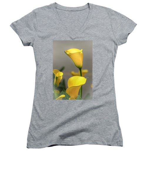Yellow Calla Lilies Women's V-Neck T-Shirt (Junior Cut) by Menachem Ganon