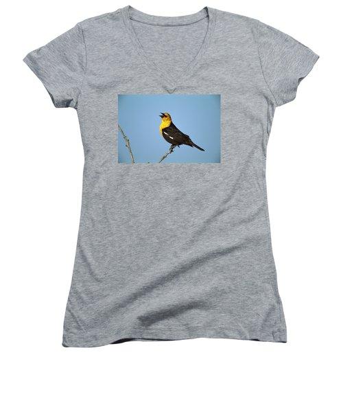 Yellow-headed Blackbird Singing Women's V-Neck T-Shirt (Junior Cut) by Tom Vezo