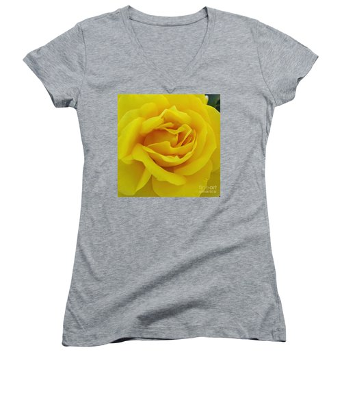 Yellow Rose Women's V-Neck T-Shirt