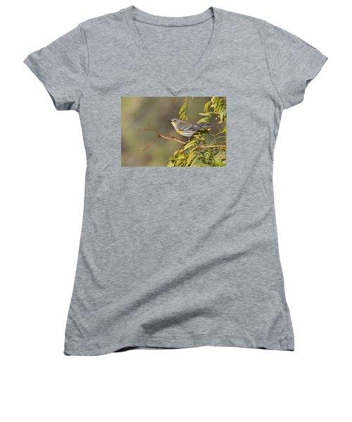 Yellow Rumped Warbler Women's V-Neck T-Shirt (Junior Cut) by Bryan Keil