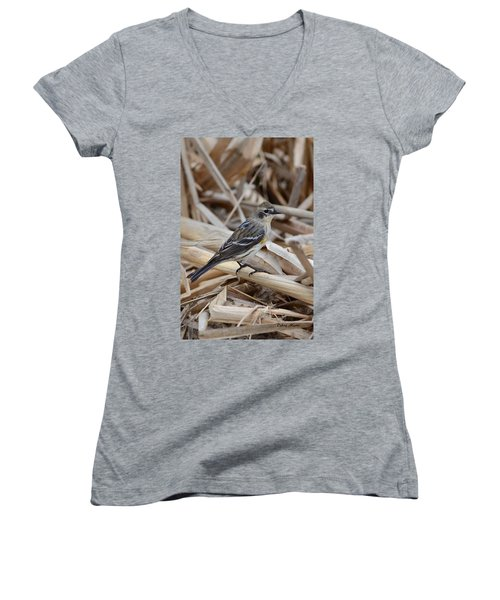 Women's V-Neck T-Shirt (Junior Cut) featuring the photograph Yellow-rumped Warbler by Debra Martz