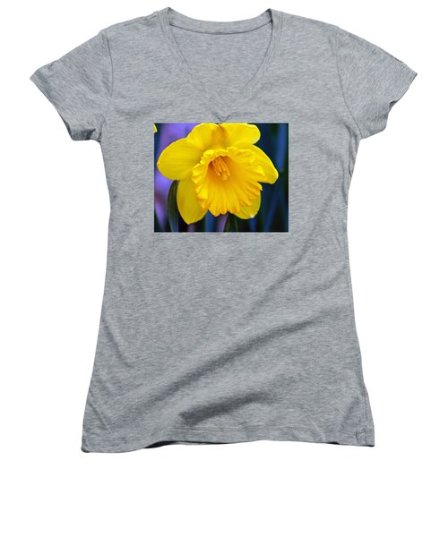 Women's V-Neck T-Shirt (Junior Cut) featuring the photograph Yellow Spring Daffodil by Kay Novy