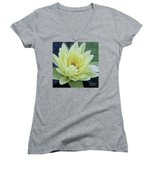 Women's V-Neck featuring the photograph Yellow Water Lily Nymphaea by Heiko Koehrer-Wagner