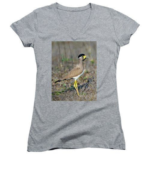 Yellow-wattled Lapwing Vanellus Women's V-Neck T-Shirt (Junior Cut) by Panoramic Images