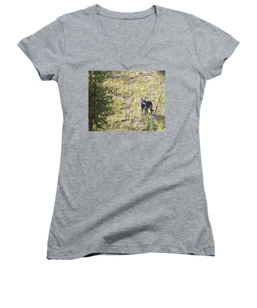 Women's V-Neck T-Shirt (Junior Cut) featuring the photograph Yellowstone Wolf by Belinda Greb