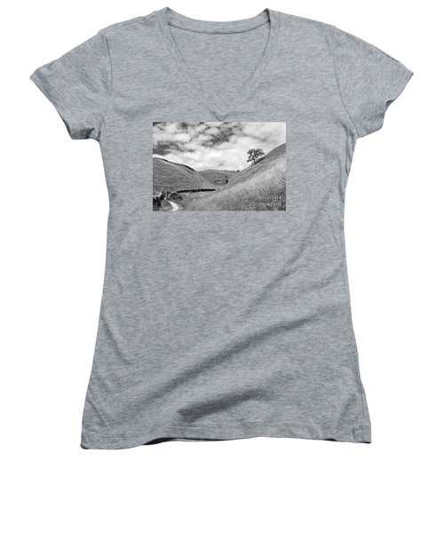 Lone Tree In The Yorkshire Dales Women's V-Neck (Athletic Fit)