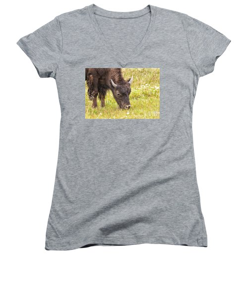 Women's V-Neck T-Shirt (Junior Cut) featuring the photograph Young Bison by Belinda Greb