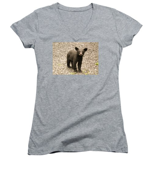 Women's V-Neck T-Shirt (Junior Cut) featuring the photograph Young Cub by Jan Dappen