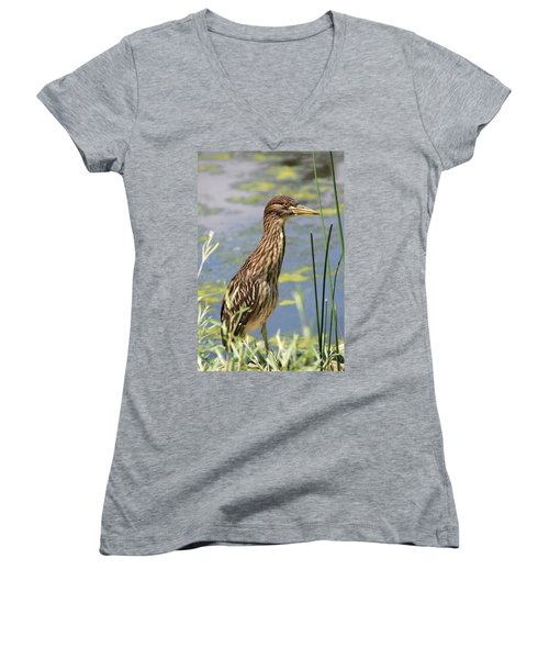 Young Heron Women's V-Neck (Athletic Fit)