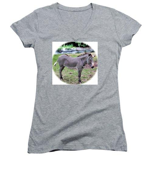 Women's V-Neck T-Shirt (Junior Cut) featuring the photograph Zebra 1 by Dawn Eshelman