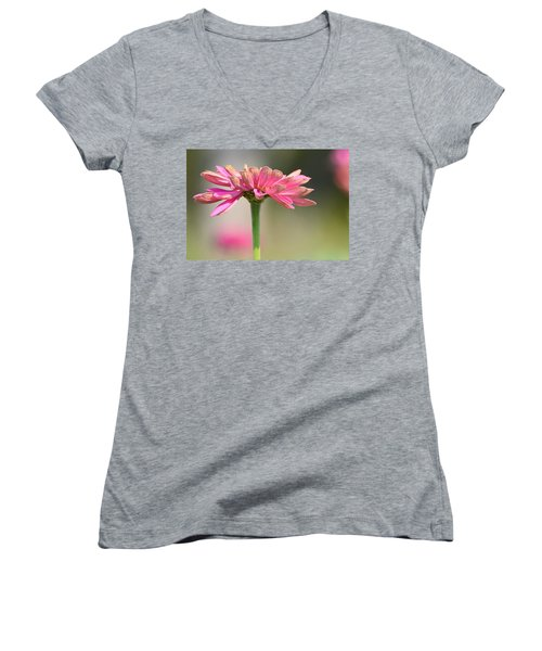 Zinnia Women's V-Neck