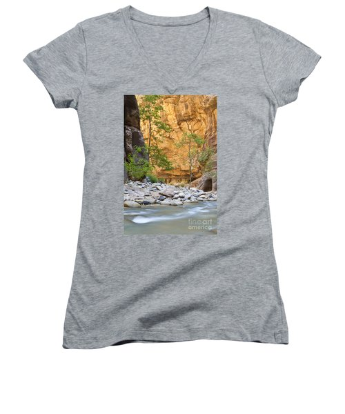 Women's V-Neck T-Shirt (Junior Cut) featuring the photograph Zion Narrows by Bryan Keil