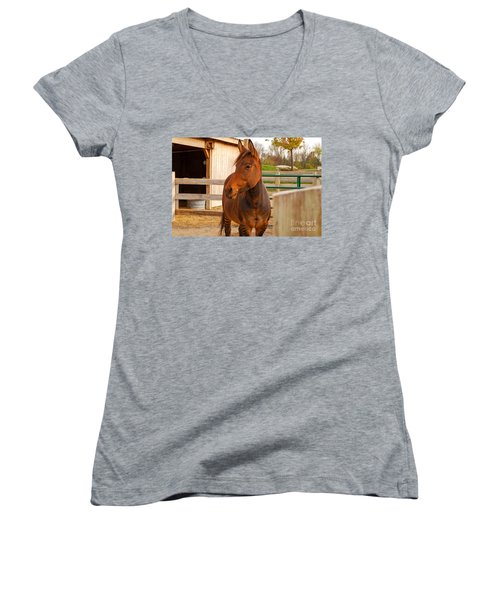 Zorse Women's V-Neck (Athletic Fit)