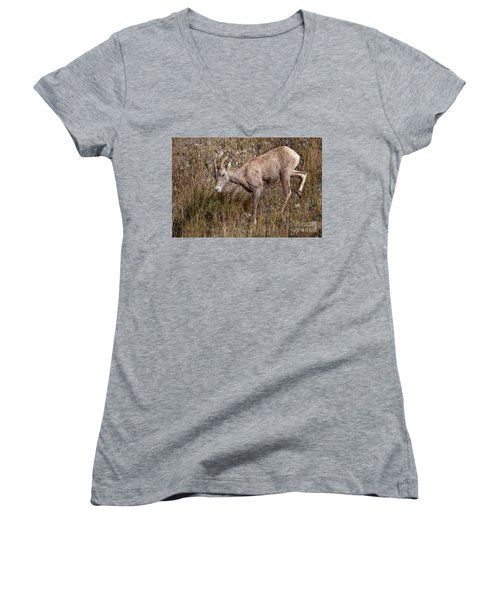 Bighorn Ewe Women's V-Neck (Athletic Fit)