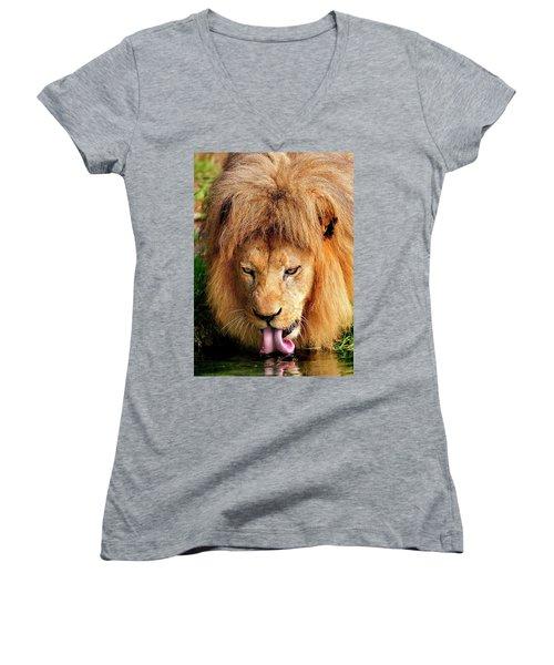 Lion Drinking Women's V-Neck