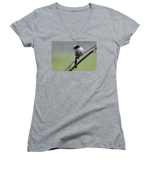 Long Tailed Tit Women's V-Neck