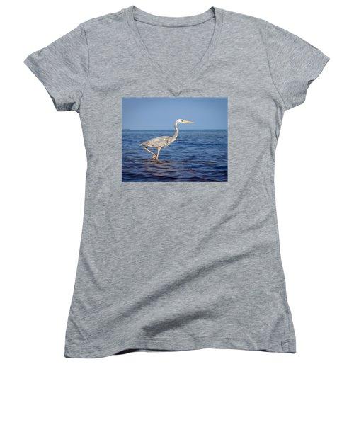 Wurdemann's Heron Women's V-Neck T-Shirt