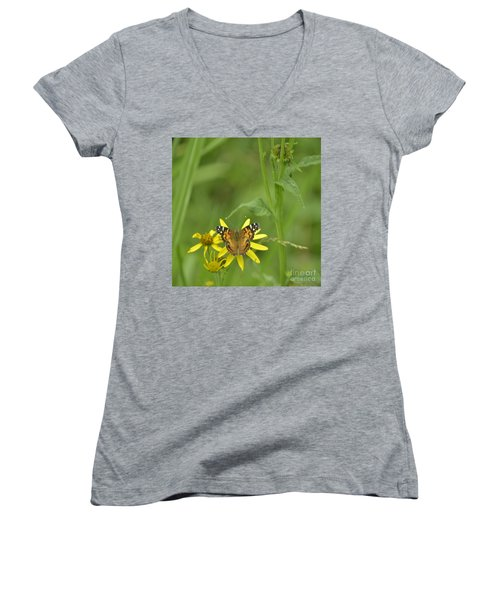 American Painted Lady Women's V-Neck T-Shirt