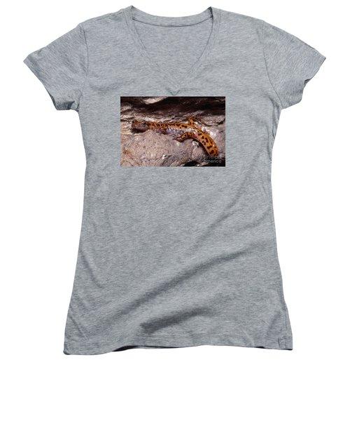 Cave Salamander Women's V-Neck T-Shirt