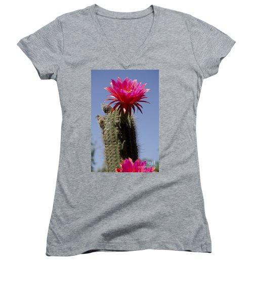Pink Cactus Flower Women's V-Neck (Athletic Fit)