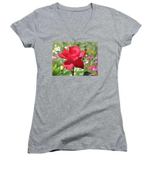 A Beautiful Red Flower Growing At Home Women's V-Neck T-Shirt (Junior Cut) by Ashish Agarwal