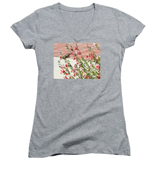 A Garden Delight Women's V-Neck T-Shirt (Junior Cut) by Heidi Smith