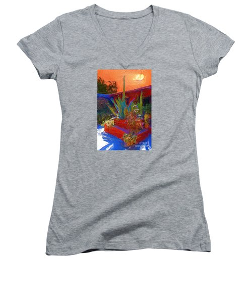 A Garden In Pozos Women's V-Neck T-Shirt (Junior Cut) by John  Kolenberg
