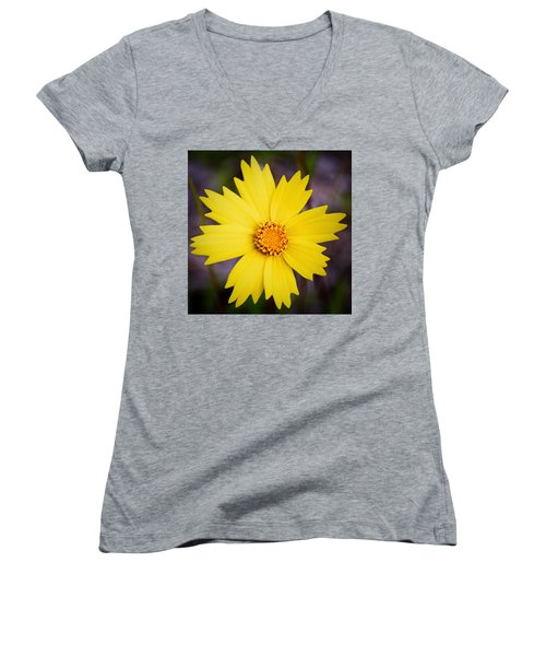 A Little Sunshine Women's V-Neck