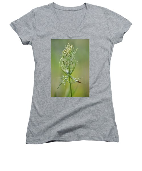 Women's V-Neck T-Shirt (Junior Cut) featuring the photograph A Meal Of Lace by JD Grimes