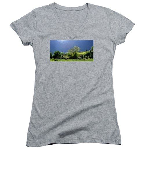 Women's V-Neck T-Shirt (Junior Cut) featuring the photograph Against The Light by Barbara Walsh