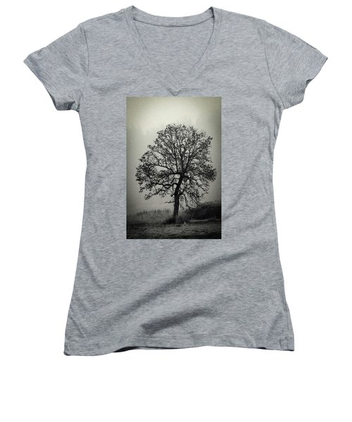 Age Old Tree Women's V-Neck T-Shirt (Junior Cut) by Steve McKinzie