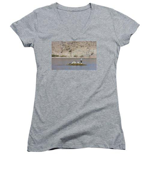 Agua Verde Fisherman  Women's V-Neck T-Shirt (Junior Cut) by Anne Mott