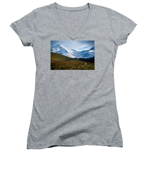 Amazing Grazing Women's V-Neck (Athletic Fit)