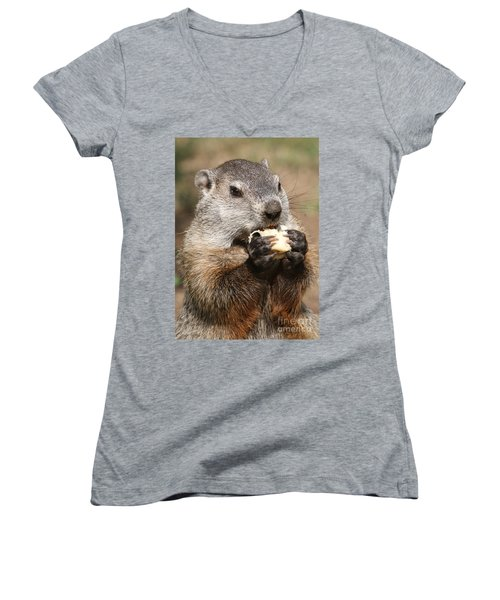 Animal - Woodchuck - Eating Women's V-Neck T-Shirt (Junior Cut) by Paul Ward